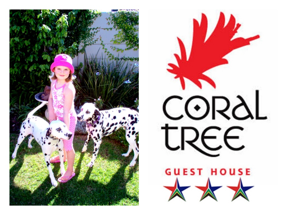 coral-tree-house1