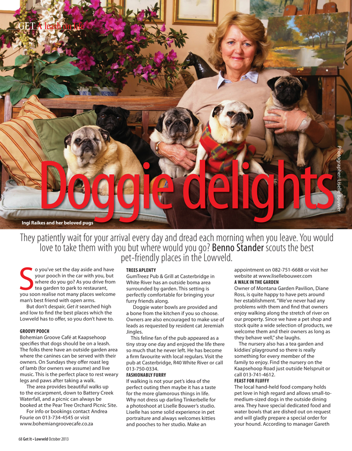 doggie-delights-1