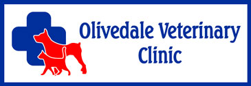 johannesburg-northriding-olivedale-veterinary-clinic-01